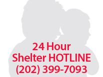 image for shelter hotline